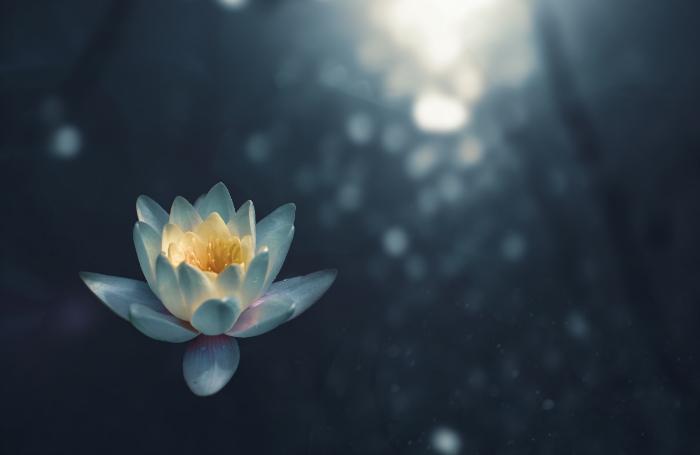 5 apps de meditación para mejorar tu ánimo y piel