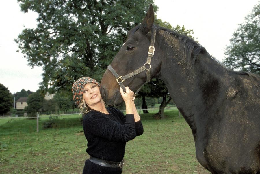 brigitte bardot se retiró en 1973 y se dedicó a cuidar a animales