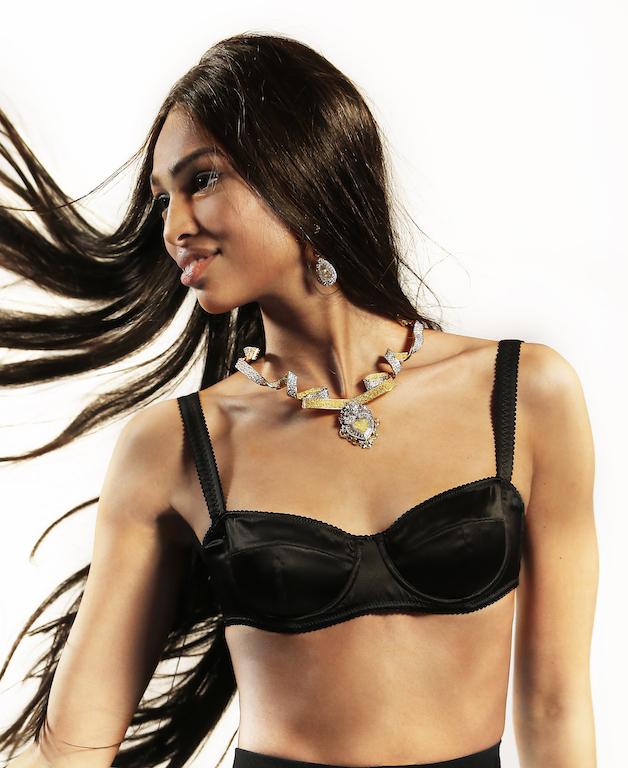 Family Affair de Dolce and Gabbana collar