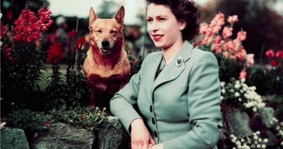 Estilo de la reina Isabel II en su juventud